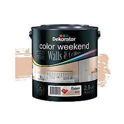Dekorator Латекс Color Weekend Сатен Teflon® Мока